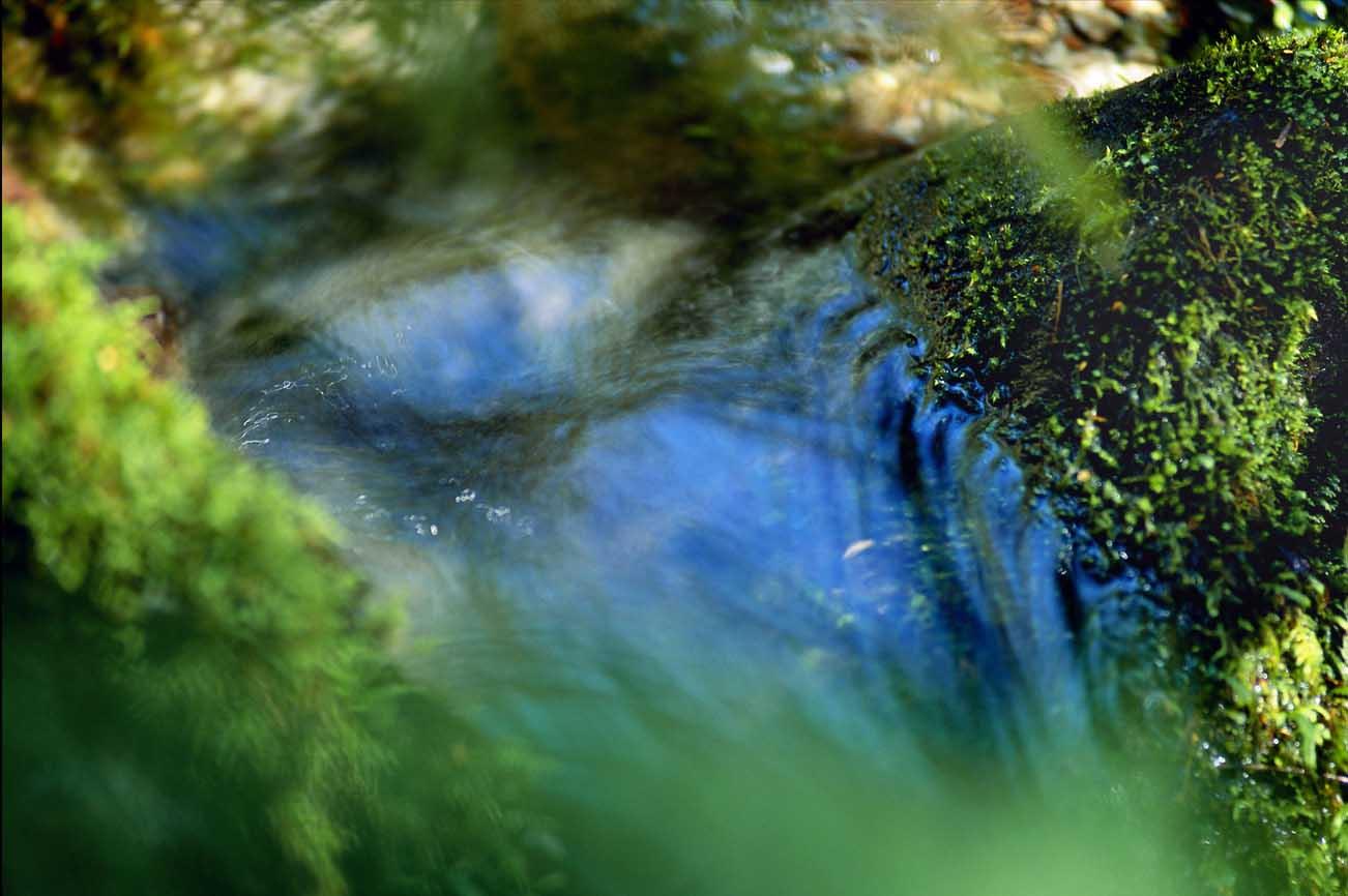 Creek-2 - no frame
